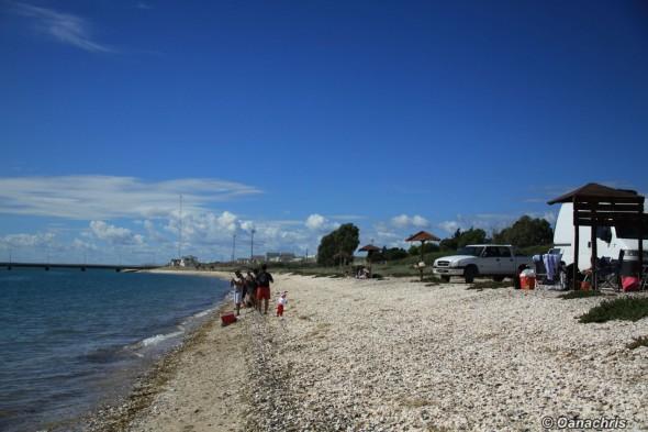 Along the beaches of San Antonio Este North Patagonia