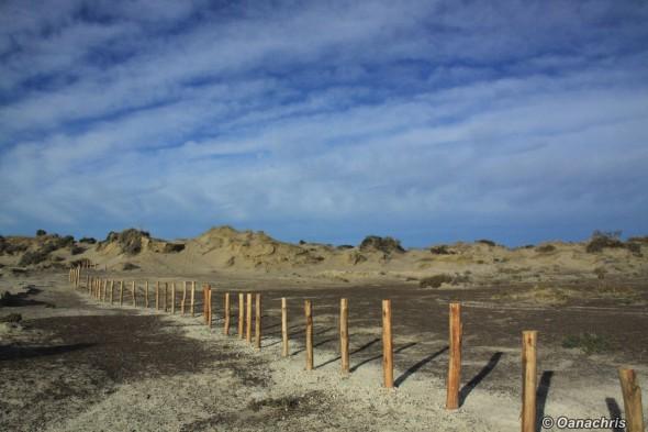 Doradillo Beach Puerto Madryn Argentina