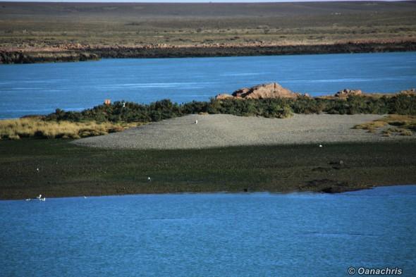 Puerto Deseado and the islets around it
