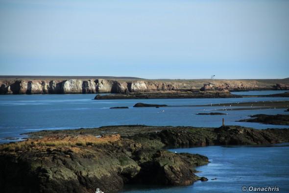 Puerto Deseado - view over the sea lion colony