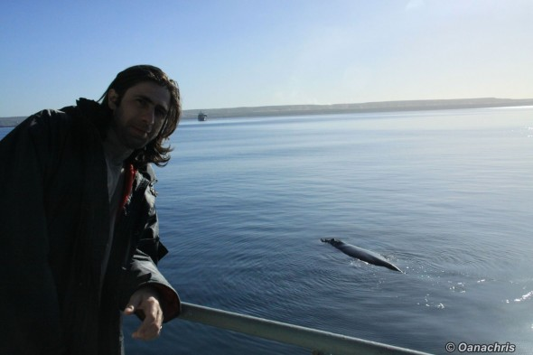 Whale watching from the vessel Puerto Madryn Argentina