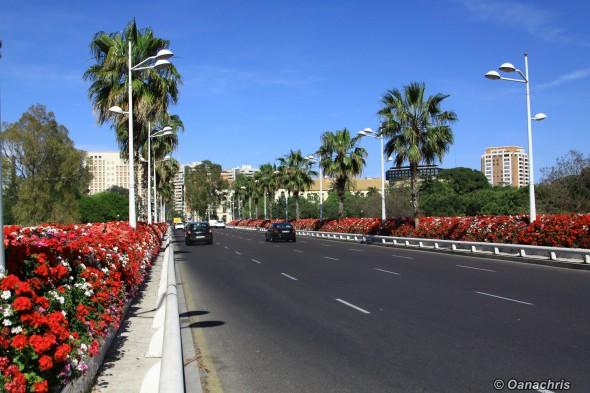 Valencia - Pont des Flores