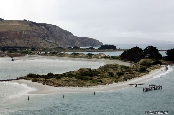 Shallow waters and sand islets Port Chalmers