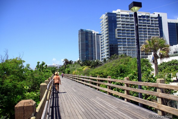 Miami broadback walk