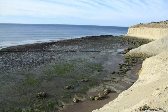 Puerto Madryn Argentina Doradillo Beach