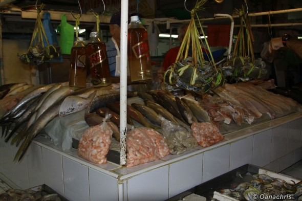 Veracruz Mercado Hidalgo