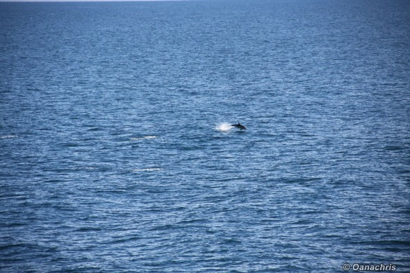 In South Atlantic Ocean (2)