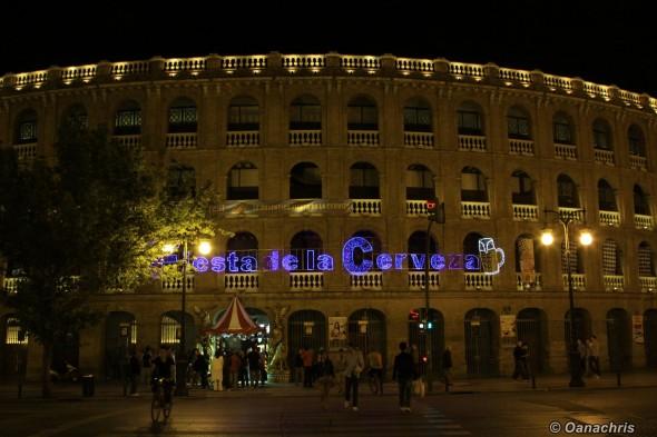 Valencia - Fiesta de la Cerveza (9)