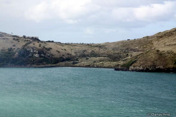 Pilot's Beach Otago Peninsula