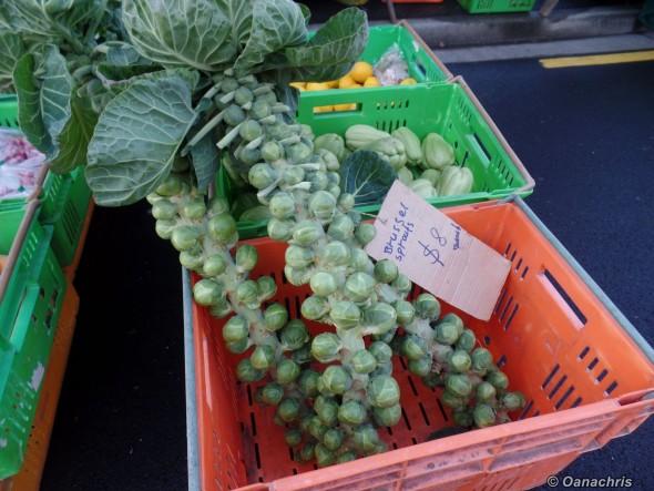 Napier weekly market