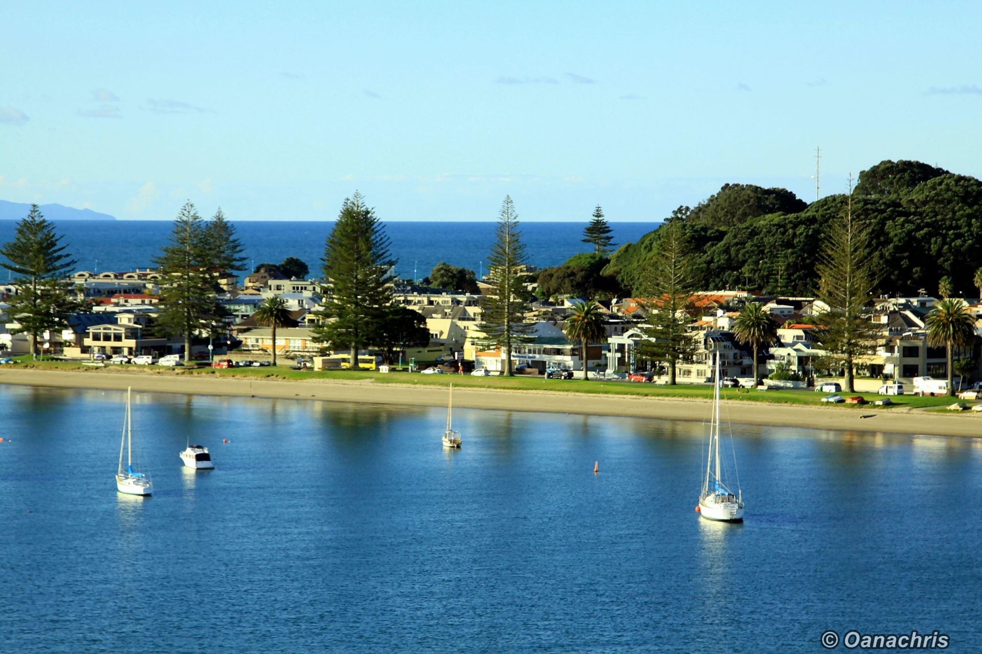 going ashore in tauranga new zealand travelling on. Black Bedroom Furniture Sets. Home Design Ideas