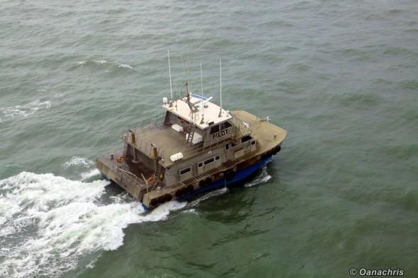 Pilot boats (2)
