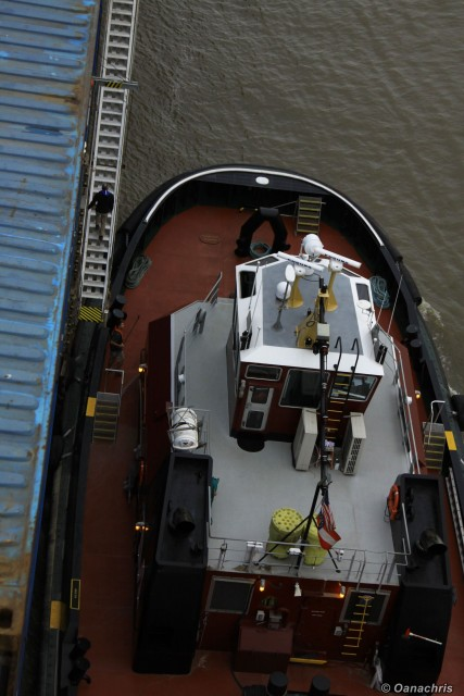 Pilot going up the gangway (2)