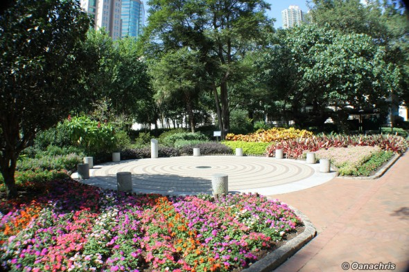 Kowloon Park (1)