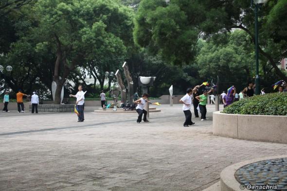 Kowloon Park (5)