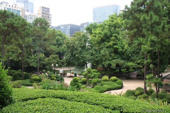 Kowloon Park (6)