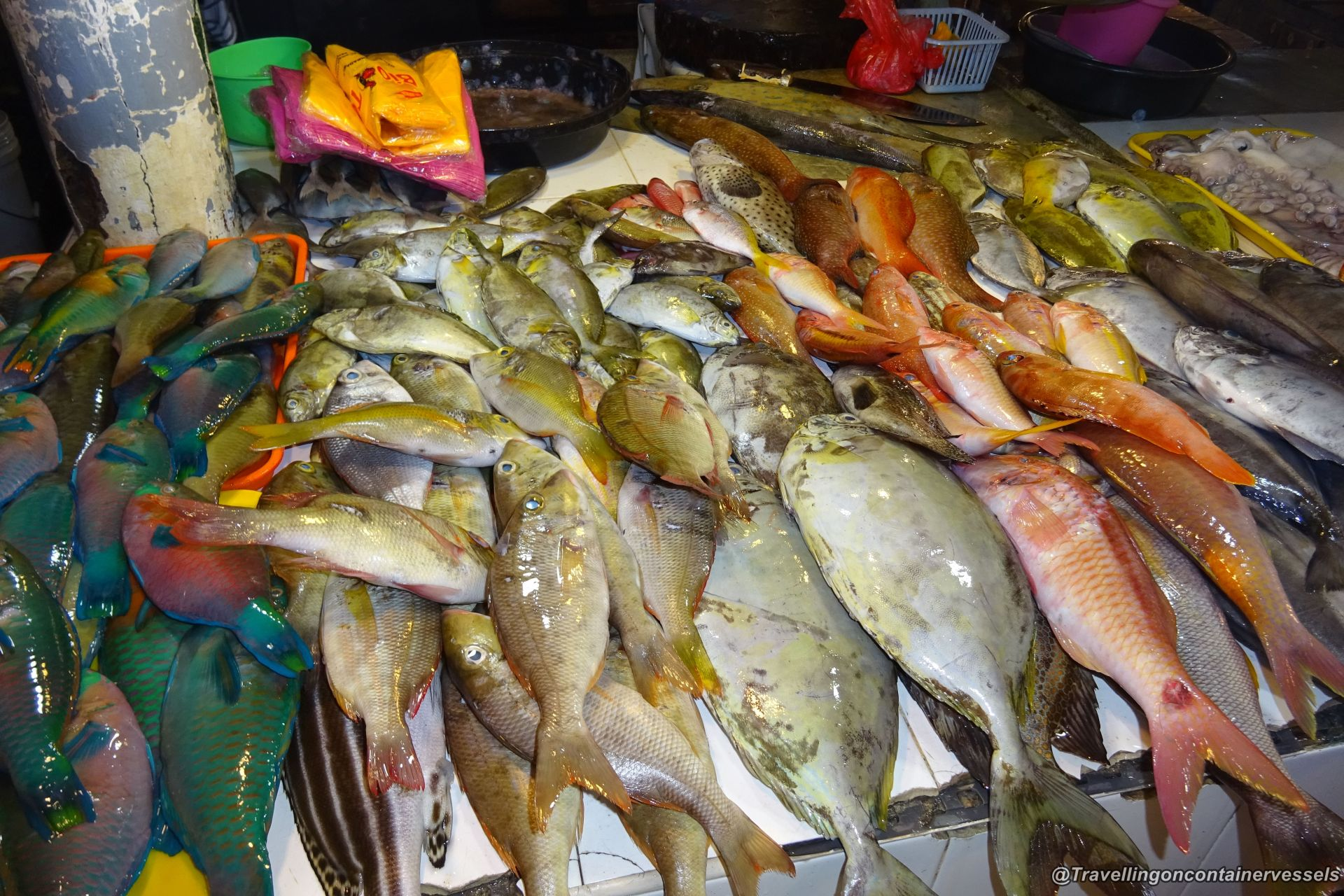 Visiting the fish market in panabo philippines for Fresh fish market near me