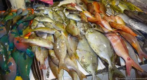 Fish Market Panabo featured image